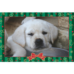 "7"" x 5 "" Greeting Cards - Christmas #4"