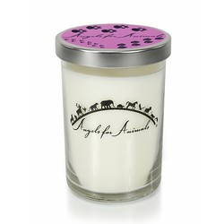12oz Soy Blend Jar Candle - Pinkberry