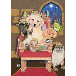 Dog Cat and other small Animals-Pets Rule Note Cards