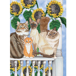 Cats-Sunflower Kitties Birthday Cards