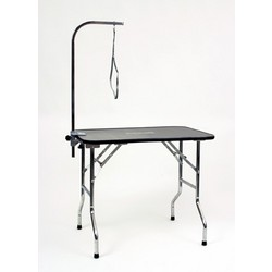 Professional Table w/AAC & Loop