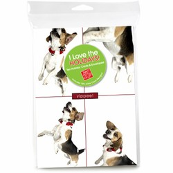 Consumer Friendly 10-pack - Beagle Jumping 4 squares