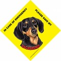 Save My Pet Signs With Suction Cup For In Home Window - (6/Case) (Breeds D-P): Dogs