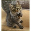 What's The Matter With Henry?  The True Tale of a Three- Legged Cat<br>Item number: 957623: Cats Products for Humans