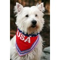 100 % American Pure Bred: Cats Pet Apparel Bandanas
