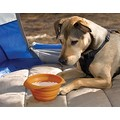 KURGO COLLAPS-A-BOWL FOR PET TRAVEL - **3 colors Orange, Blue, or Red **