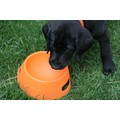 Aqua-Fur Travel Dog Bowl: Dogs Bowls and Feeding Supplies Travel Bowls
