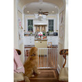 "10.5"" Side Extension for the Stairway Special and Autolock Gate: Dogs For the Home"