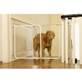 The Clear Gate: Dogs Training Products Miscellaneous