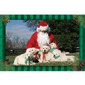 7&quot; x 5 &quot; Greeting Cards - Christmas #3<br>Item number: 067: Dogs Holiday Merchandise