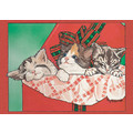 Cats-Surprise Awakening<br>Item number: C429: Cats Holiday Merchandise