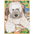 Wheaten Terrier<br>Item number: C886: Dogs