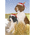Englsih Springer Spaniel<br>Item number: C921: Dogs Gift Products Greeting Cards