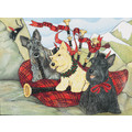 Scottish Terrier<br>Item number: C936: Dogs Gift Products Greeting Cards