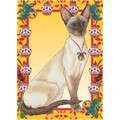 Cats-Siamese<br>Item number: C988: Cats