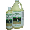 KENIC Oatmeal Conditioning Shampoo: Dogs Shampoos and Grooming