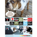 Doggie Tee - Bitch Magnet: Dogs Pet Apparel T-shirts