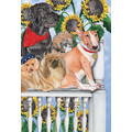 Dog Daze of Summer Note Cards<br>Item number: N877B: Dogs Gift Products Greeting Cards