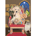 Dog Cat and other small Animals-Pets Rule Note Cards<br>Item number: N488B: Cats