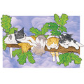 Cats-Out on a Limb Note Cards<br>Item number: N410B: Cats