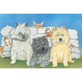 Breed Specific Counter Cards (C-E): Dogs Gift Products Greeting Cards