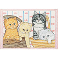 Cats-Kitties in a Basket Birthday Cards<br>Item number: B485: Cats