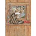 Cats-Maine Coon Birthday Cards<br>Item number: B987: Cats