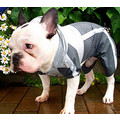 Cover-All Raincoat: Dogs Pet Apparel Raincoats