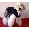 Tuxedo Suite: Dogs Pet Apparel