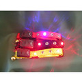 SPORTS LED LIGHTED CAT COLLAR - Adjustable with BREAK-AWAY Safety Clasp: Cats Collars and Leads