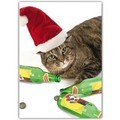 Christmas Card - Cat w/ Beer &amp; Santa Hat<br>Item number: DS3-12XMAS: Cats