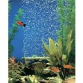 BUBBLE-WALL: Fish Aquarium Products