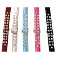 Designer Double Row Swarovski Dog Collar