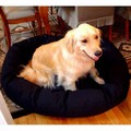 Donut Bagel Pet Bed