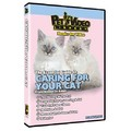 Caring for Your Cat<br>Item number: 71583: Cats Training Products
