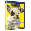 French Bulldog - Everything You Should Know<br>Item number: 71556: Dogs Training Products