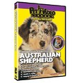 Australian Shepherd - Everything You Should Know<br>Item number: 71542: Dogs