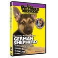 German Shepherd - Everything You Should Know<br>Item number: 71513