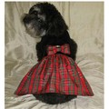 Holiday Cheer Dress: Pet Boutique Products
