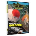 Set-Up &amp; Maintain Goldfish<br>Item number: 71560-GOLD: Fish Educational Products